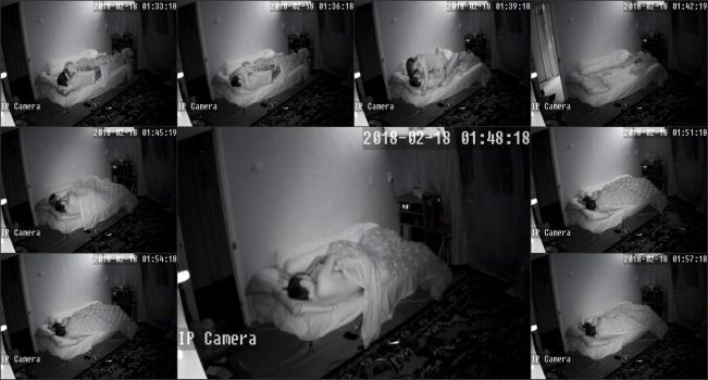 Hackingcameras_1124